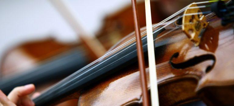 Comment choisir l'archet de votre violon ?