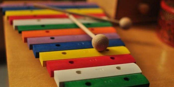 Le xylophone, un instrument ou un jouet ?